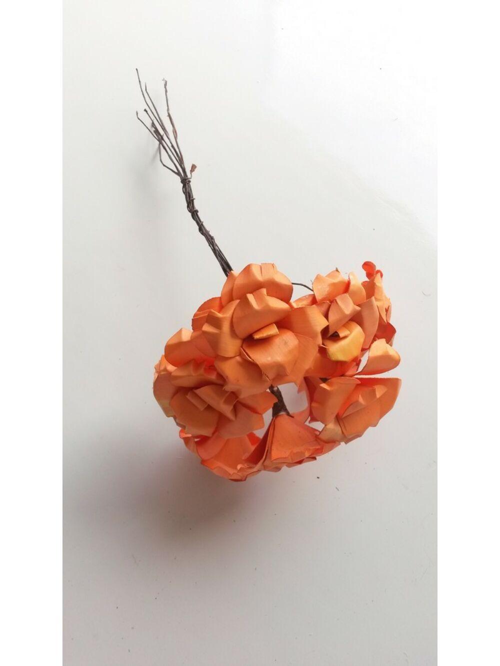 Fa tölcsérvirág-Narancs