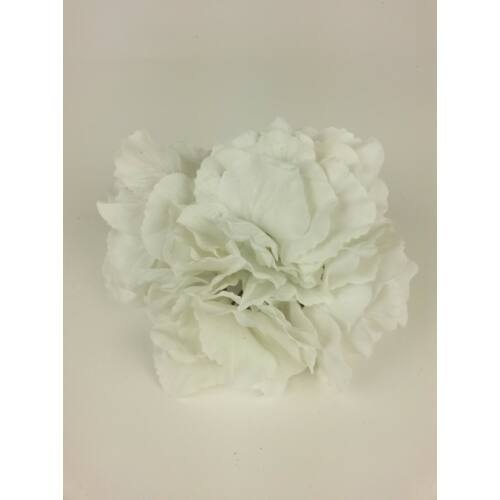 Hortenzia fej-Fehér