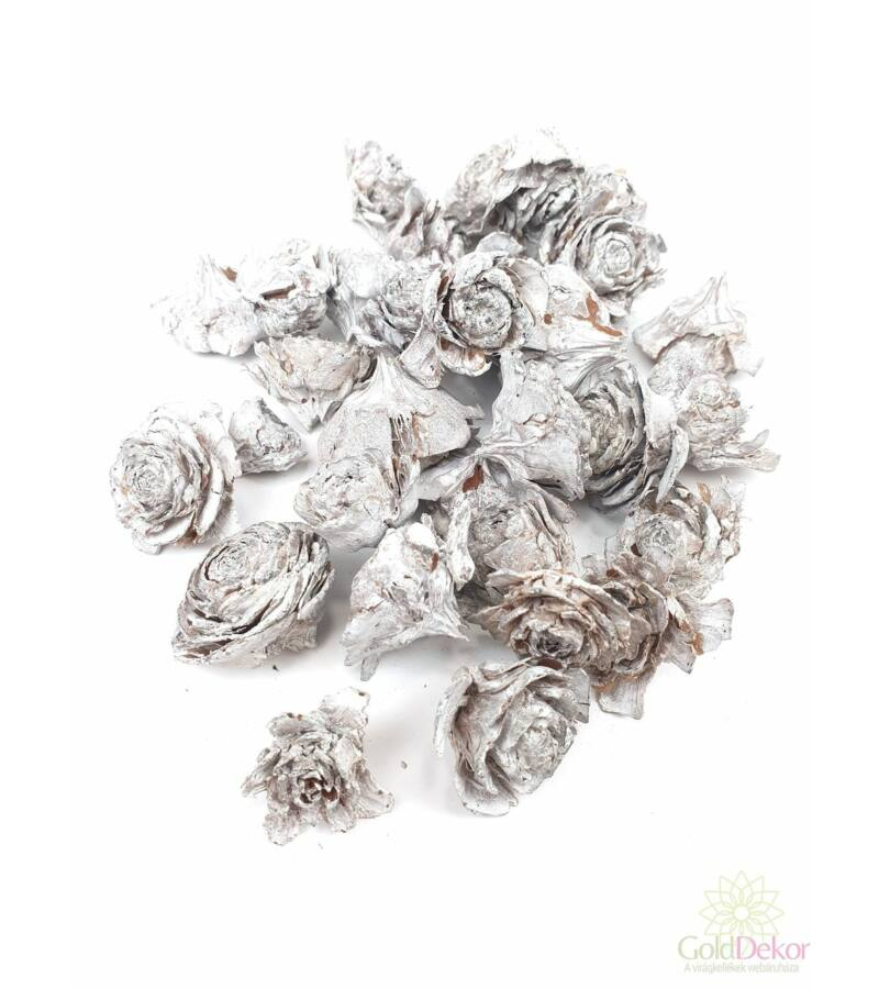 Cédrus rózsa fej 3-5cm zúzmarás