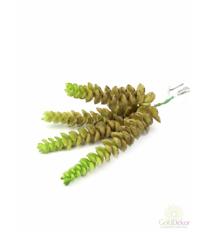 Mű pozsgás növény 26