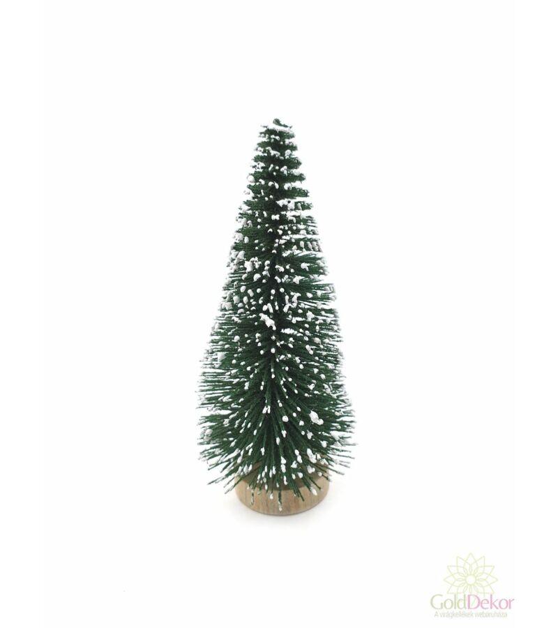 Talpas fenyőfa 10 cm - Sötét Zöld