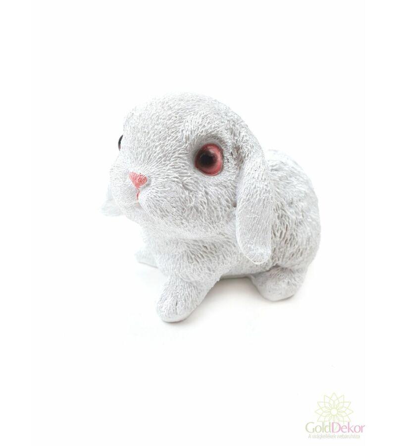 Lógófülü fehér nyuszi