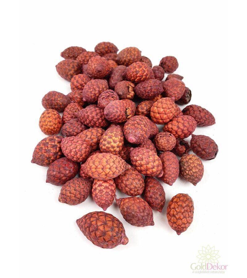 Cane Fruit - Narancs